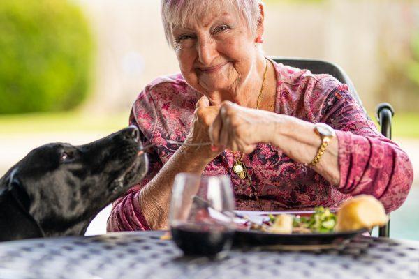 Comment préparer des menus pour des personnes âgées ?